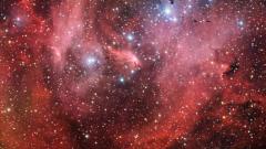 Поток от падащи звезди наблюдаваме у нас
