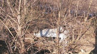 20-годишен лясковчанин загина на пътя на изхода на Разград