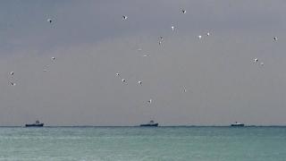 Руски военен Ту-154 се разби на път за Сирия