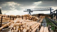 Дървопреработватели протестират срещу пазарна спекула