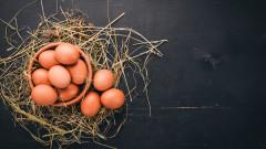 Митове и факти за яйцата