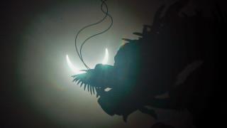 """Рядко слънчево затъмнение """"огнен пръстен"""" в най-дългия ден в годината"""