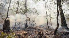 Два пожара горят в област Перник