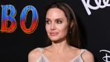 Анджелина Джоли, рожденият ден на Шайло и как се забавляваха