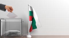 Българите в Германия гласуват в рекорден брой секции