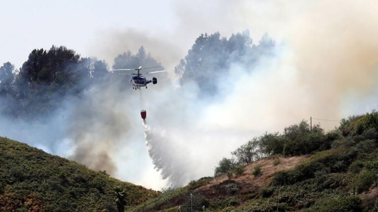 Властите в испанските Канарски острови обявиха, че разраснал се горски