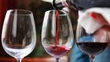 Успя ли Brexit да удари по винопроизводството?