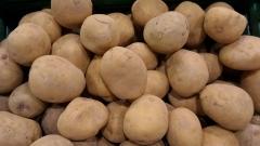 НСИ: С близо 46% е скочила цената на картофите