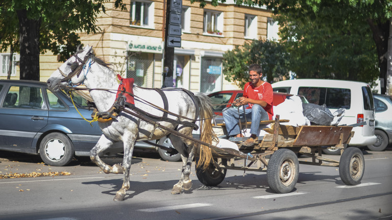 Счупена каруца, обезумял кон и масов бой между цигани и българи на булевард в София