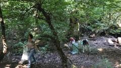 От 26 март започва пролетното почистване в София