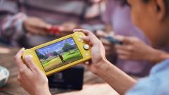 С какво ще ни зариби Nintendo Switch Lite