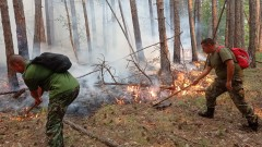 Пожарът край Кирково се разраства