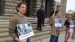 Вегани настояват за криминализиране на опитите с животни