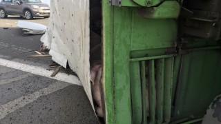 """Камион с прасета се преобърна на АМ """"Тракия"""""""