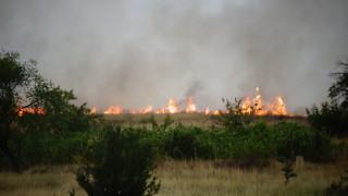 Пожари в областите Хасково и Ямбол