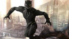 """Какви са плановете на Marvel за """"Черната пантера 2"""""""