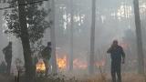 Пожарът в харманлийско е локализиран