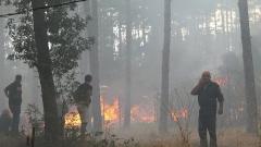Локализираха двата пожара в Сакар, трети пламна в кърджалийско