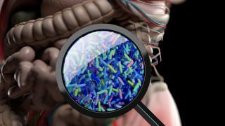 За какво помагат пробиотиците