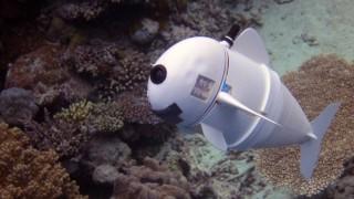 Роботът, който изследва океаните