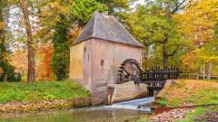600-годишна белгийска воденица отчете ръст на поръчките за брашно заради коронавируса