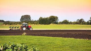 НАП: 18 000 фермери декларираха дохода си от субсидии