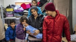 Децата бежанци ще бъдат записвани в училище с карта за нивото на образование