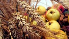 Производствените цени в селското стопанство скочиха с 20%
