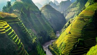 Защо милениалите по света избират да живеят в Бали