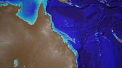 Големият бариерен риф е заплашен от масово избеляване на корали всеки 2 години