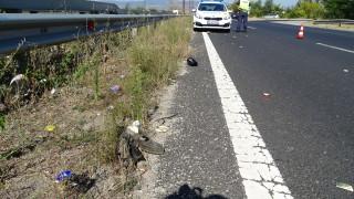 Ударен от кола велосипедист почина в Тетевен