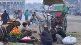 15 убити и над 60 ранени при атентат в пакистанския град Лахор