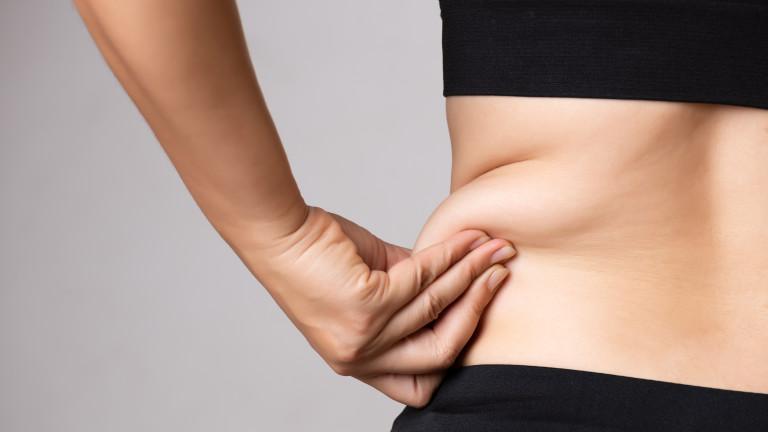 Какво не знаем за мазнините в тялото