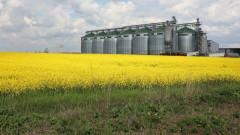 ОАЕ инвестира $500 милиона в земеделския сектор в Румъния