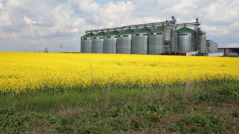 Ниските добиви и сушата свиха с над 8% продукцията в селското стопанство