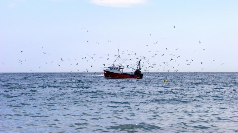 Франция задържа британски траулер, извършващ риболов в нейните териториални води