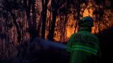 Безпрецедентен брой горски пожари в Австралия