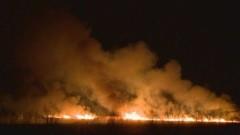 Пламна Драгоманското блато