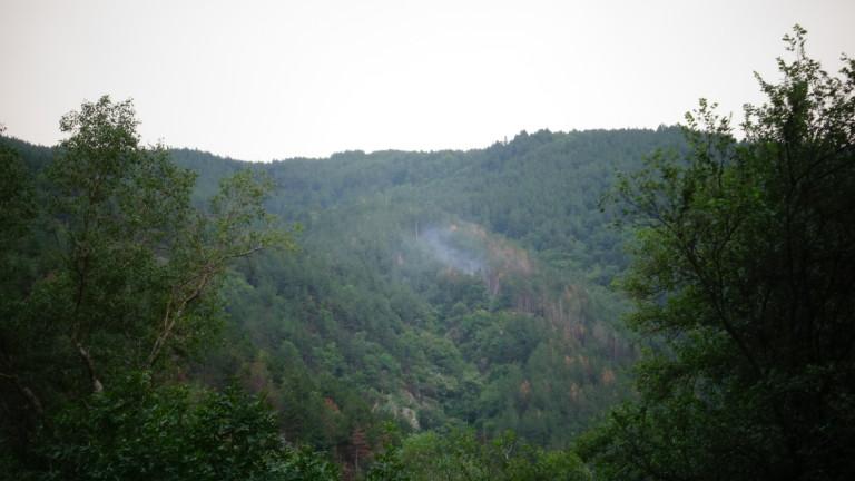 Откриха четирима младежи, загубили се в Родопите, съобщи МВР. Сигналът