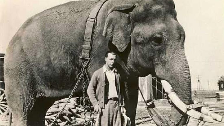 9 от най-смелите и ужасяващи експерименти в историята