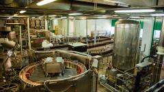 Продажбите на бира в България падат с 5%