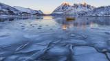 Арктика, Северният полюс, рекордните жеги в Сибир и какъв ще е ефектът от тях