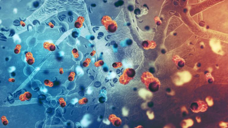 Ефектът на гравитацията върху раковите клетки