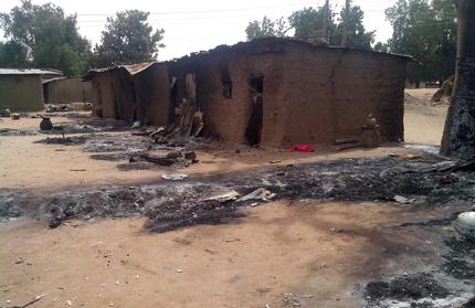 """Армията на Камерун използва бойна авиация срещу """"Боко харам"""""""