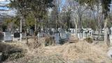 Погребаха съдия Майа Попова, открита мъртва в дома си