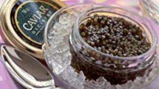 Русия изнася 23.5 тона черен хайвер през 2007-ма