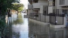 """Жертвите на тайфуна """"Хагибис"""" вече са 35"""