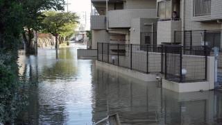 Тайфунът в Япония е унищожил влакове стрела на стойност $300 милиона