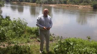 Установено е веществото, отровило кравите край Димитровград