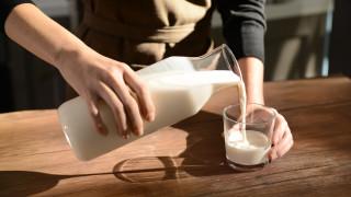 Колко сухо мляко има в пресните млека, продавани в магазините у нас?